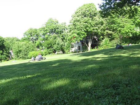 corey hill